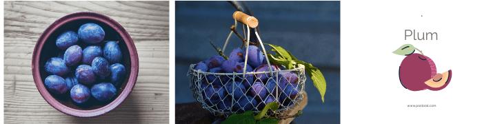 Fruits To Grow In A Garden - Plum